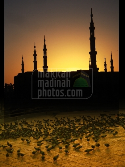 Silhouette of Holy Mosque
