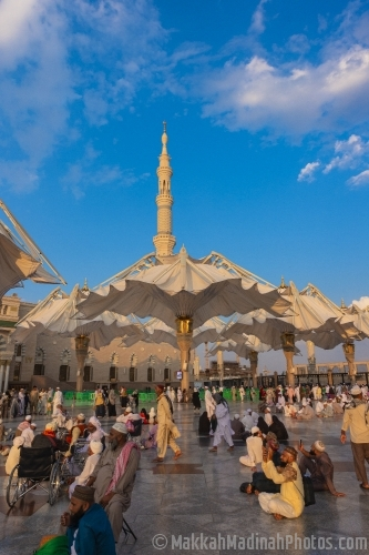 Giant canopies at Prophet Mosque